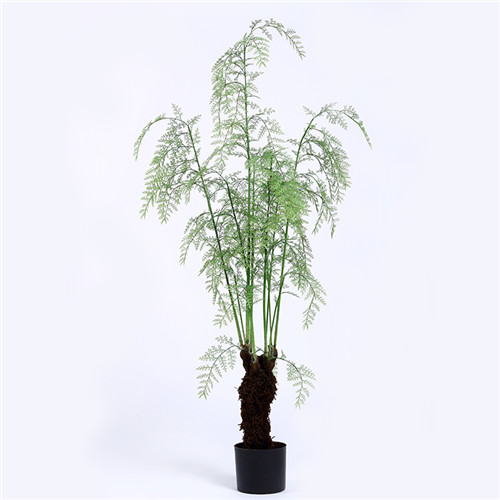 High Quality Artificial Ferns Bonsai, In Pot, 210CM