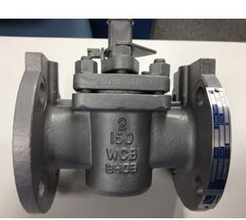 Reduced Port Plug Valve, Pressure DN20, PN50, A351 CF8 Plug