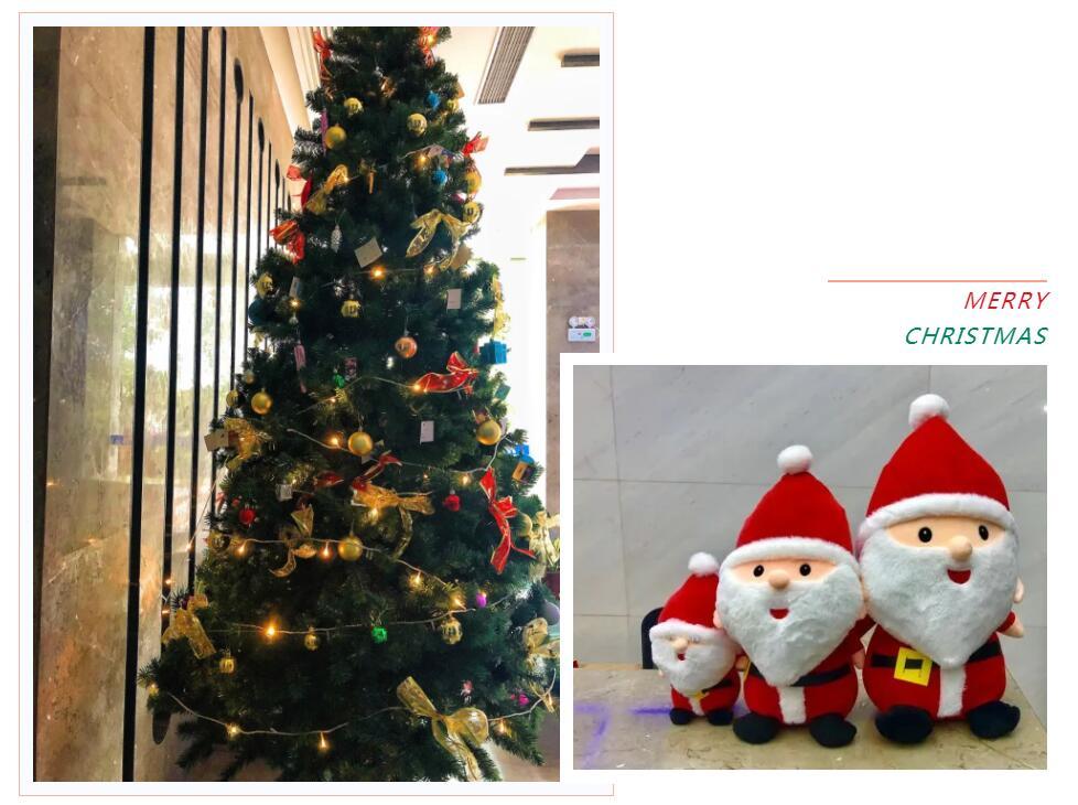 The Santa Claus and Fir Tree