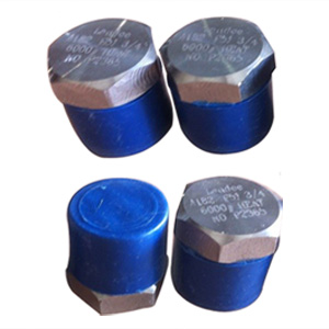 ASTM A182 GR F51 Hex Head Plug, UNS S31803, DN20, 6000#, MNPT Ends