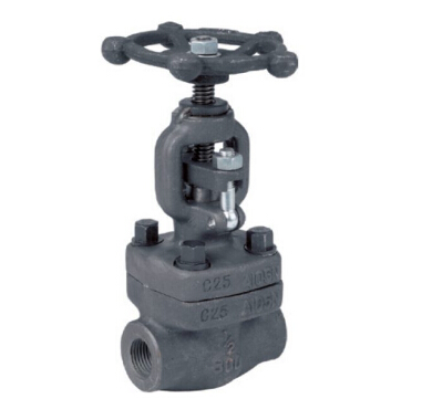 Socket Weld Globe Valve, Forged Steel, API 598, 800 LB, 1/2 Inch